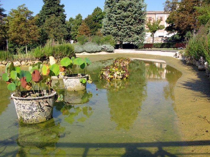 Temperature africane e il laghetto dei giardini diaz si for Laghetto i giardini