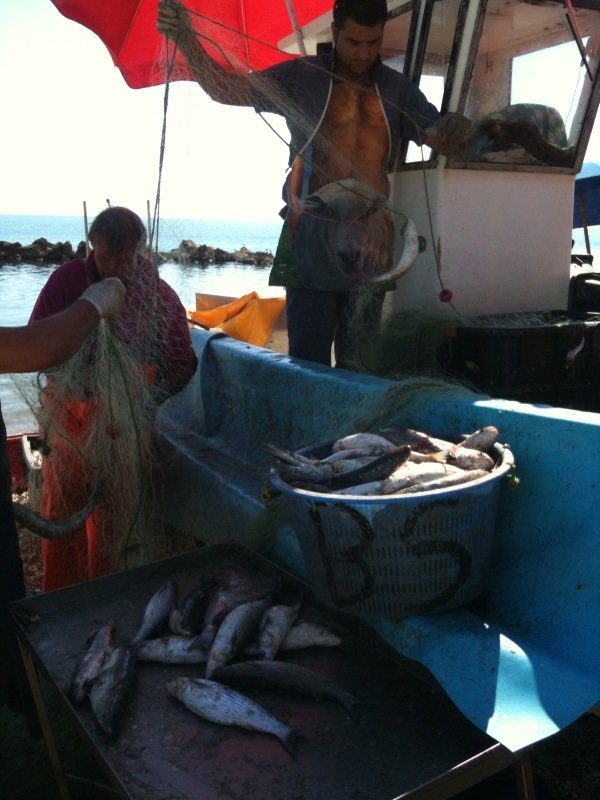 Gps sulle piccole barche coldiretti chiede la sospensione for Barchetta da pesca