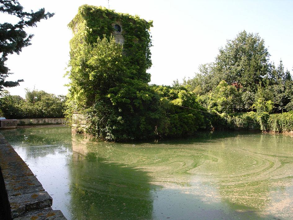 La Peschiera Vasca L.Ricci