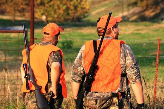 Legge regionale sulla caccia, il Consiglio dei ministri impugna