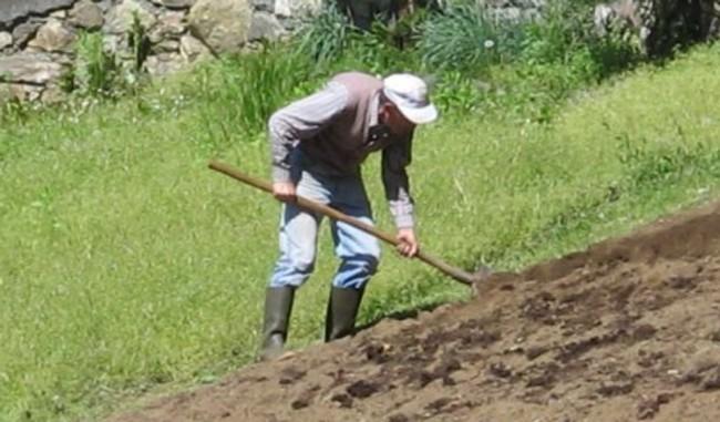 Libero agricoltori sito di incontri in USA
