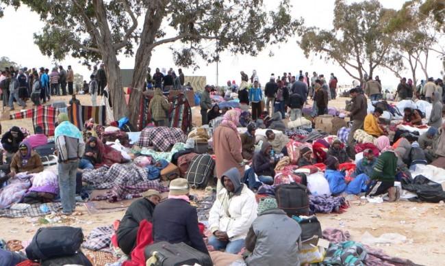 Migranti: onlus collegate a pregiudicati della 'ndrangheta, 11 arresti
