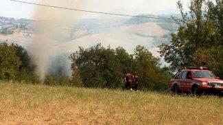 Rogo nel bosco:  in fiamme un&acutearea di 10 ettari   (FOTO)