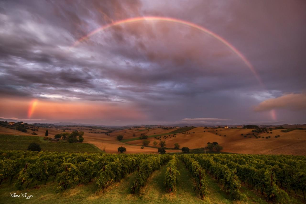 Sito di incontri arcobaleno