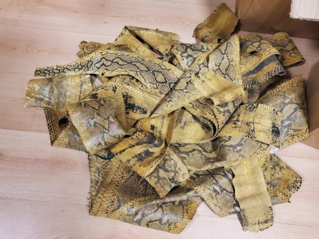 sequestro-pelli-morrovalle-2-650x488