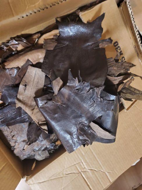 sequestro-pelli-morrovalle-3-488x650