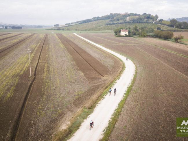 marche-trail-15-650x488