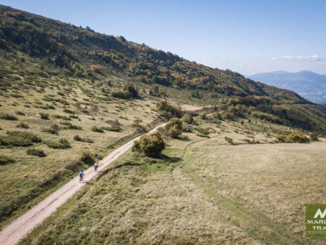 marche-trail-6-650x488