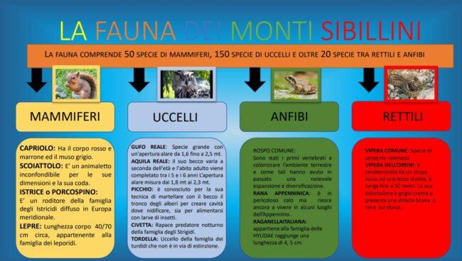 monti_sibillini_topolino