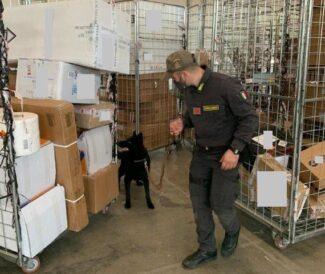 arresto-marijuana-bitcoin-1-e1615461118450-325x274