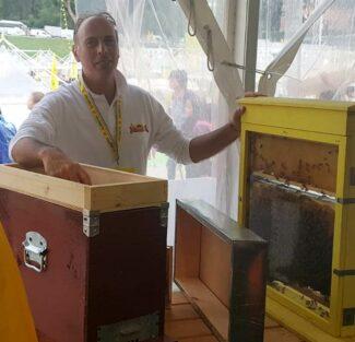 un-apicoltore-mostra-le-sue-api